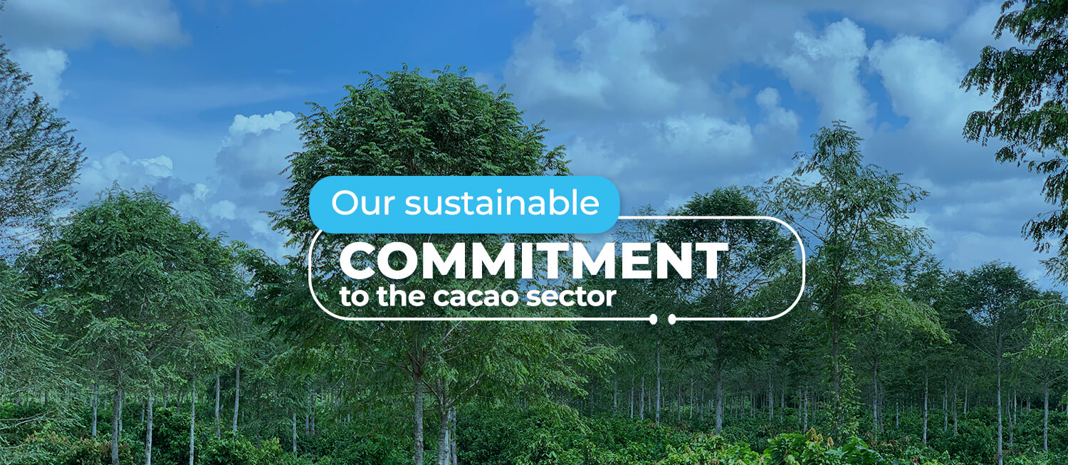 Commitment to the cacao sector