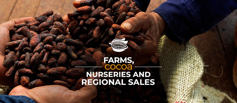 Regional sales, farms and cocoa nurseries